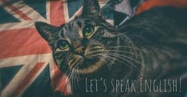 Lezioni d'Inglese Online!