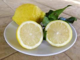 Limoni non trattati dal produttore al consumatore