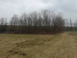 Terreno agricolo 1000mq