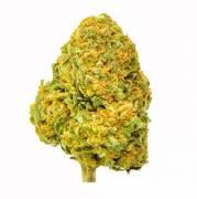 Cannabis cbd Confezionata/sfuso