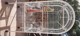 Voliera spaziosa per pappagalli