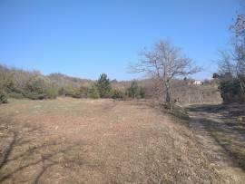 Terreno agricolo in Istria.