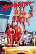 Baywatch serie tv anni 90-David Hasselhoff
