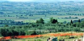 Rif. 443 terreno edificabile a Piedicolle di Collazzone