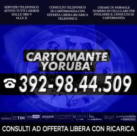 I Tarocchi di Yoruba'...il Cartomante