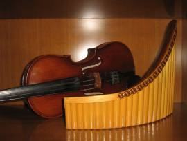 Lezioni di Violino e/o Flauto di Pan - metodo Gheorghe Zamfir.