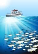 barca da pesca fisherman altura sottocosta
