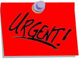 Urgente sto cercando lavoro a tempo pieno (no part-time) o di notte!