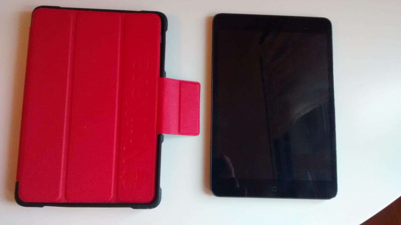 Apple Ipad Mini con custodia