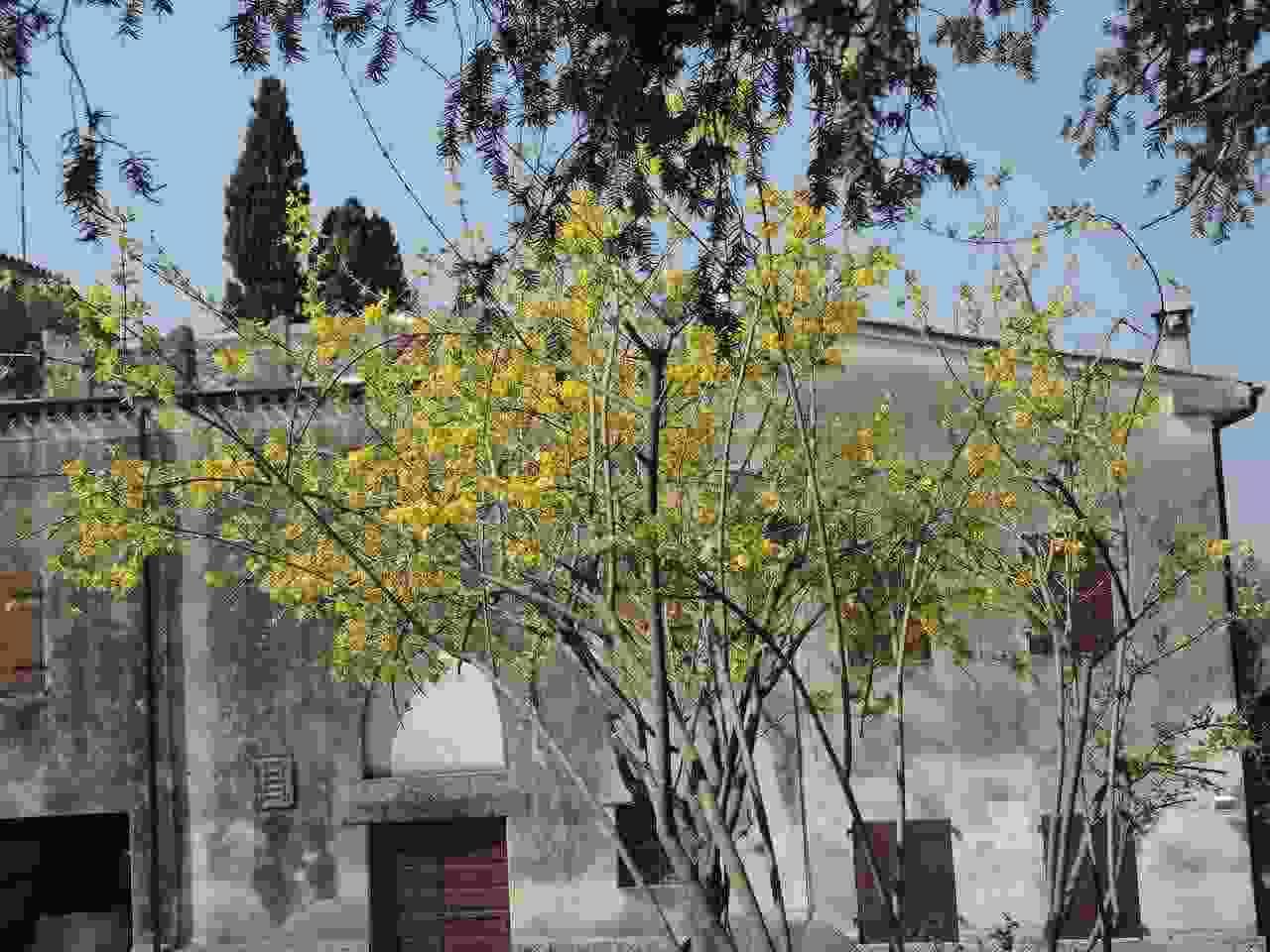 Alloggio - Turistico allo Stemma Reale