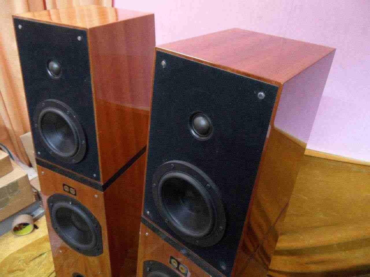 VERITY PARSIFAL ENCORE speakers