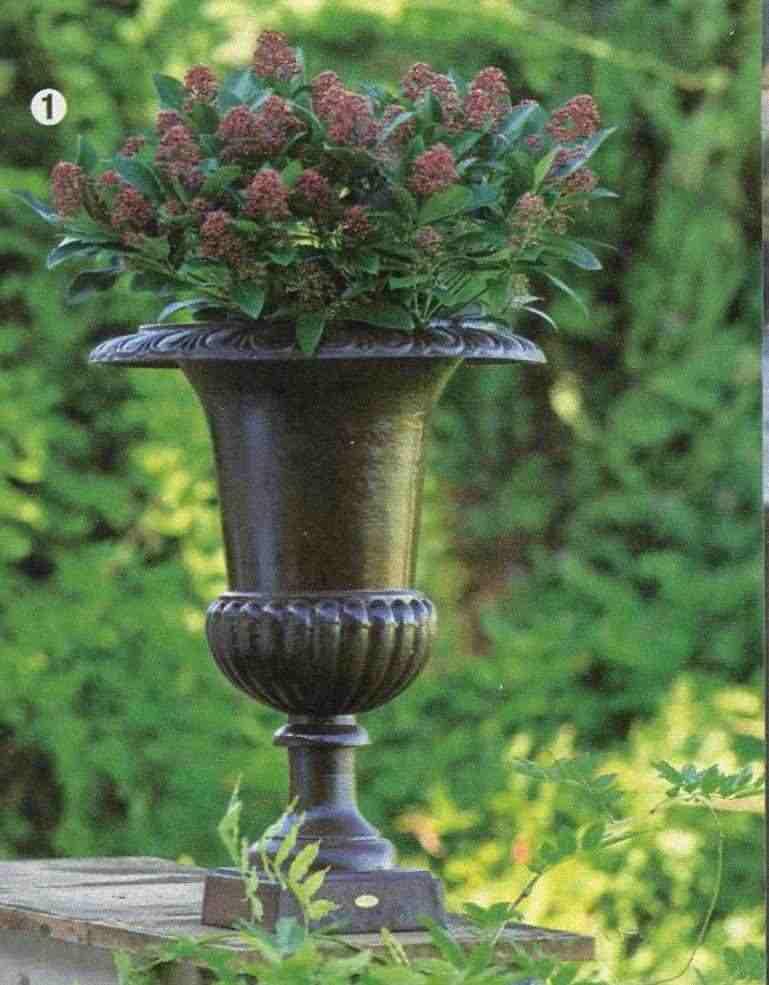 Coppia di grandi vasi da giardinoi