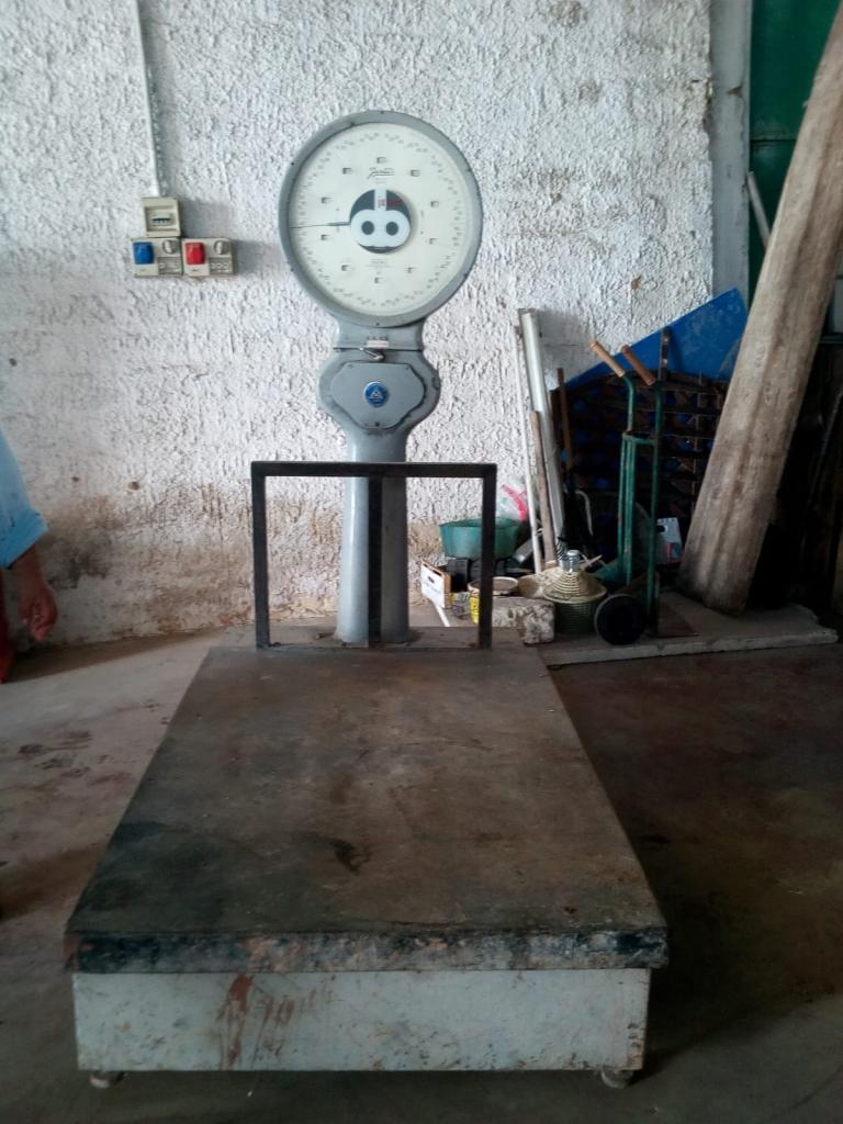 Bilancia in acciaio Pesa Pallet 2000 Kg