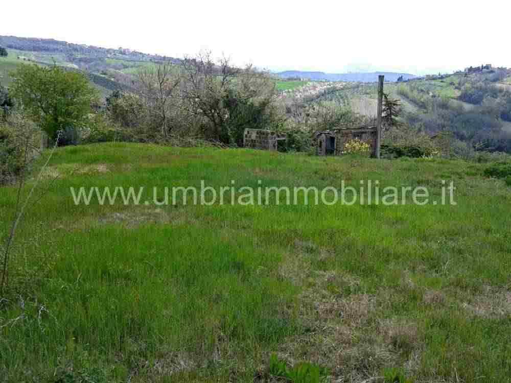 Rif. 415 terreno edificabile a Todi