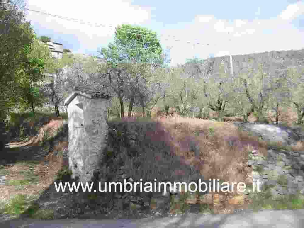 Rif. 418 terreno edificabile a Massa Martana