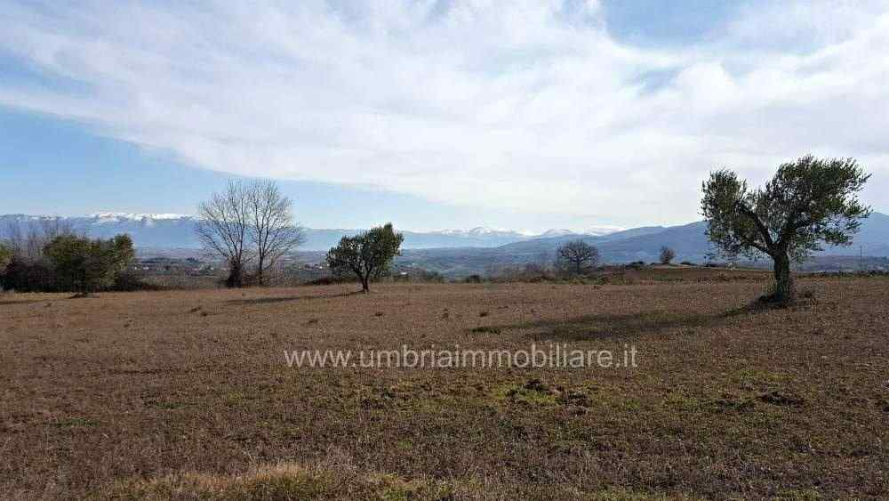 Rif. 430 terreno edificabile a Gualdo Cattaneo