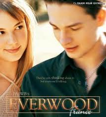 Everwood stagioni da 1 a 4 (IN OFFERTA)