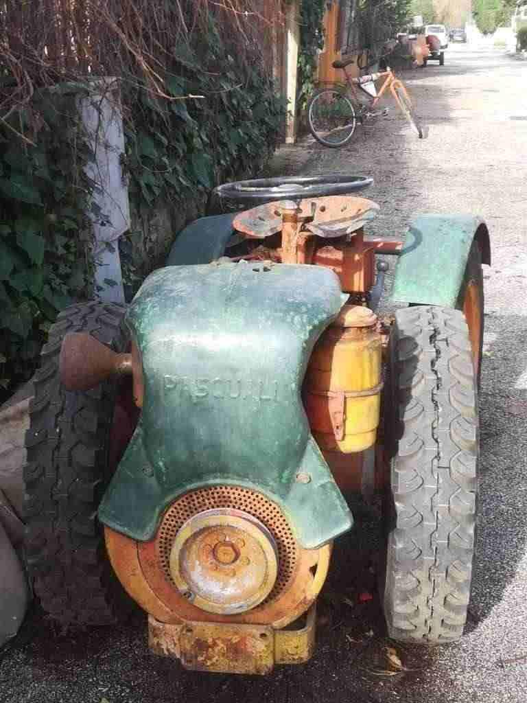 Vendo trattore Pasquali buono stato.