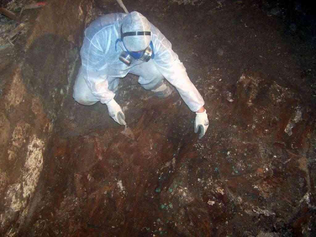 Corso in Antropologia e Archeologia forense-autorizzato MIUR