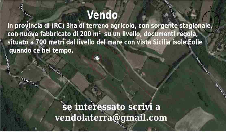 Disponibile in provincia di (RC) 3ha di terreno agricolo