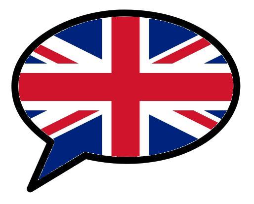 Traduttrice impartisce lezioni di inglese