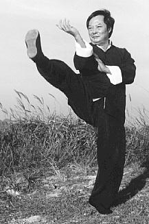 Corso di Wing Chun a Milano