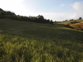 Rustico indipendente con vista panoramica e terreno
