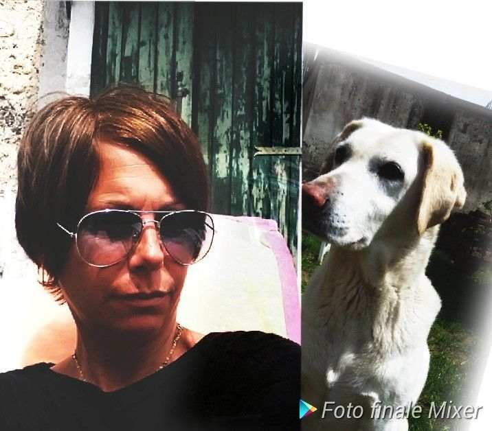 DOG SITTER E PENSIONE CASALINGA