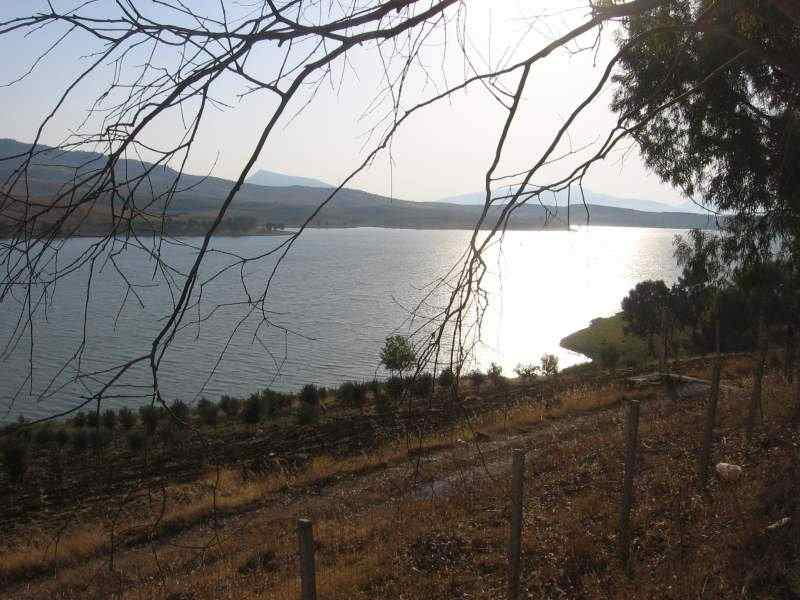 5 ettari di terreno in riva al lago + rudere di antico baglio