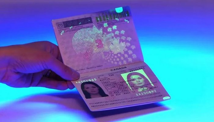 BUY SUPER HIGH QUALITY DOCUMENTS AND UNDETECTABLE COUNTERFEIT MONEY  https://www.expressdocsnow.com