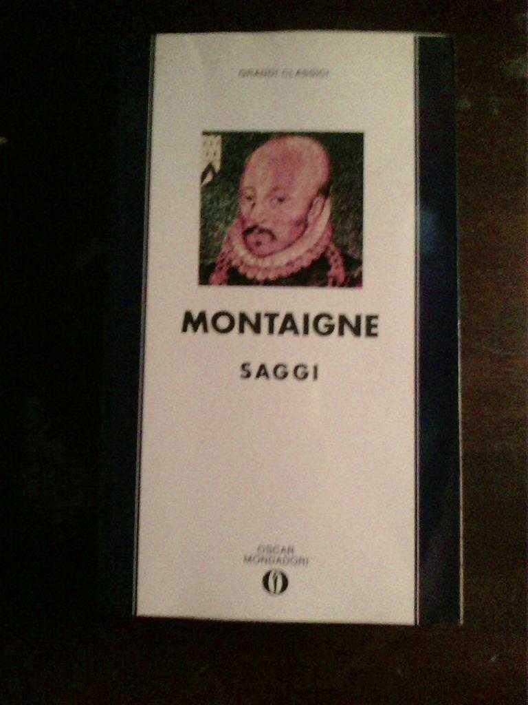 Michel de Montaigne - Saggi