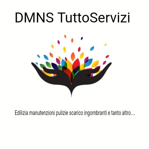 DMNS           TUTTO SERVIZI CASA
