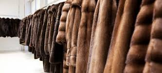 Com pro pellicce usate_volpe e visone