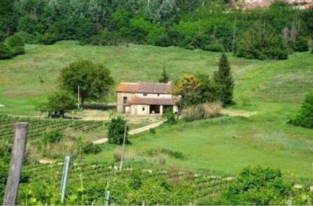 Affitto casale per feste private nel Chianti a 16 km da Firenze