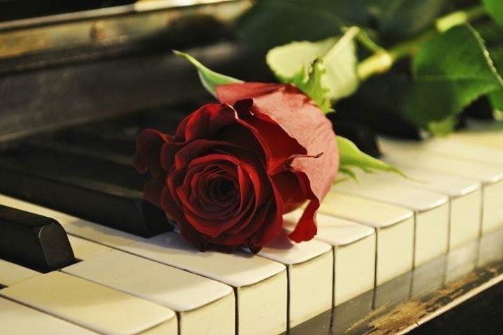 Lezioni di musica, pianoforte e vocalità