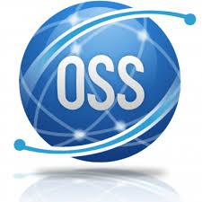 Corso Operatore Socio Sanitario (O.S.S)