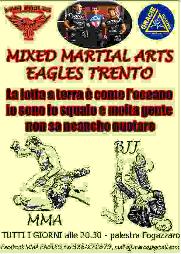 CORSO MMA - mixed martial arts