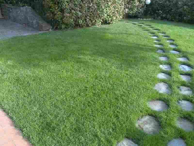 Giardiniere italiano esperto in cura giardini e terrazzi