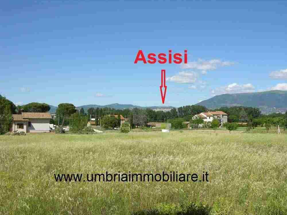 Rif. 423 terreno edificabile a Bettona, 20 km da Perugia