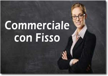 Lavoro Commerciale con Fisso in Monza e Brianza