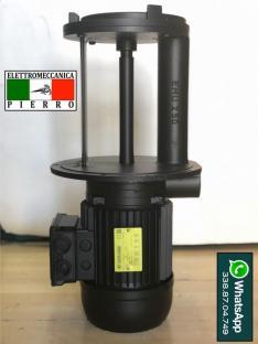 Riparazione Vendita Pompe Sacemi - Elettromeccanica Pierro