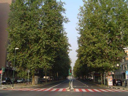 Corso Vittorio Emanuele - monolocale