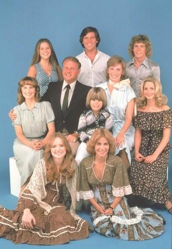 La famiglia Bradford tutta la serie tv completa anni 70
