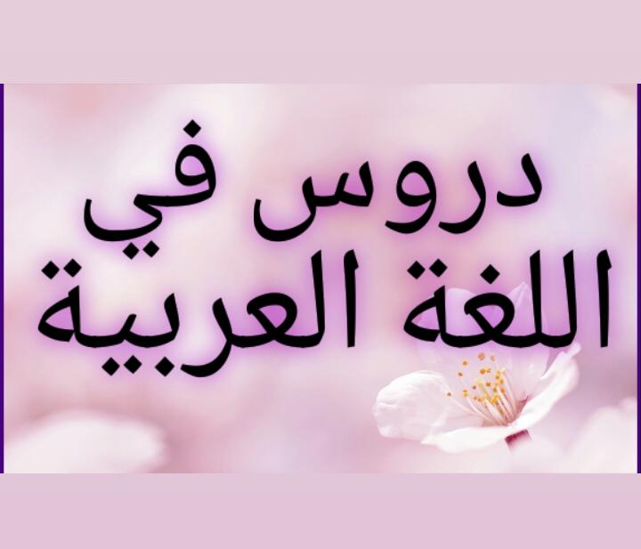 Lezioni di lingua araba con insegnante madrelingua