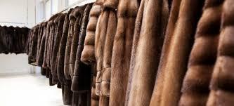 Sono interessato ad acquistare pellicce usate