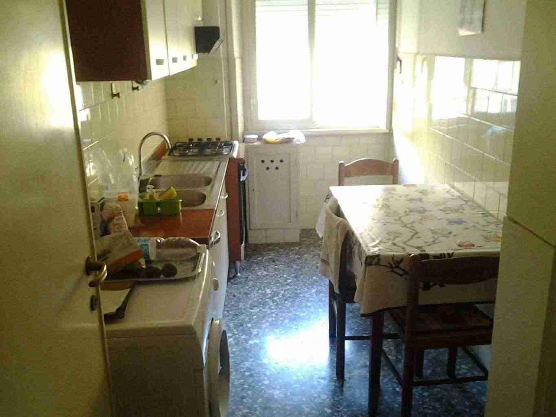 Fittasi due stanze singole in zona Casal Bertone